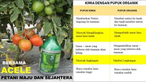 Perbandingan Pupuk Kimia Dan Organik