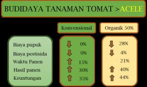 Pemupukan Untuk Pencegahan Busuk Batang Tomat, Tomat, Batang Tomat