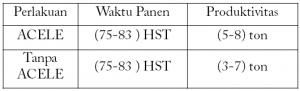 Cara Aplikasi Acele Pada Tanaman Padi, acele, acele indonesia, pupuk cair, pupuk organik, pupuk cair organik